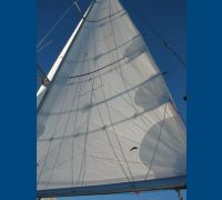 cruise laminate mainsail
